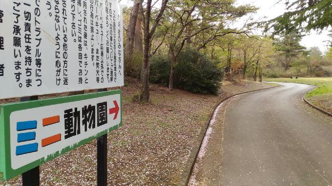 公園の先にミニ動物園があります