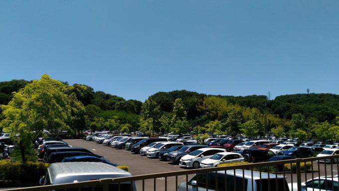 花フェスタ記念公園の東駐車場